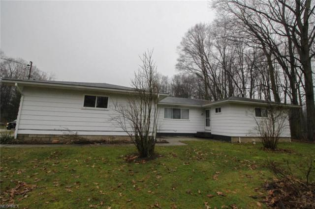 9658 Wisteria Dr, Windham, OH 44288 (MLS #3981234) :: Keller Williams Chervenic Realty