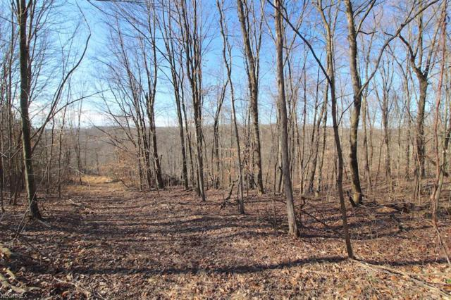Mckee Hill Rd, Frazeysburg, OH 43822 (MLS #3981475) :: The Crockett Team, Howard Hanna