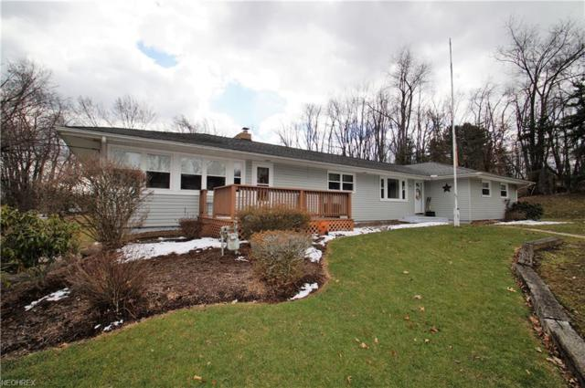 244 48th St SW, Canton, OH 44706 (MLS #3981657) :: RE/MAX Trends Realty