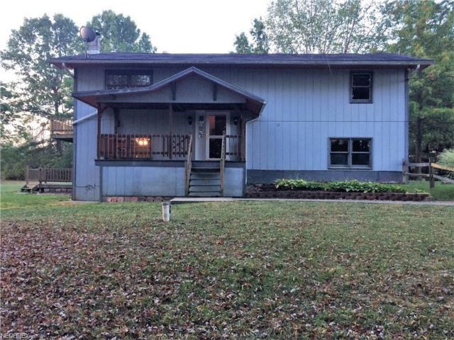 5114 Campbellsport Rd, Ravenna, OH 44266 (MLS #3981751) :: Keller Williams Chervenic Realty