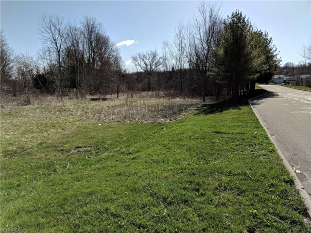 Warren Meadville, Cortland, OH 44410 (MLS #3982056) :: The Holden Agency