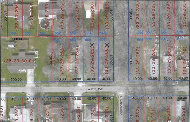 Laurel Ave Lots 606 & 607, Lake Milton, OH 44429 (MLS #3982439) :: The Crockett Team, Howard Hanna