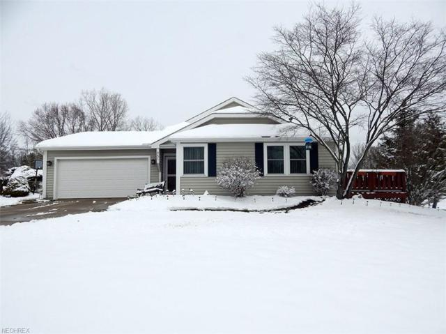951 Meadow Gateway Dr, Medina, OH 44256 (MLS #3982541) :: Keller Williams Chervenic Realty