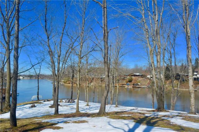 1586 Pierpont Dr, Roaming Shores, OH 44084 (MLS #3982848) :: Keller Williams Chervenic Realty