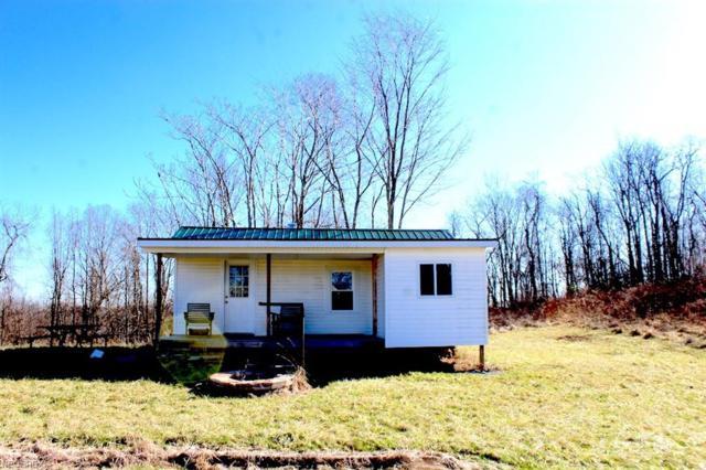 Beagle Club Rd, Scio, OH 43988 (MLS #3982949) :: RE/MAX Valley Real Estate