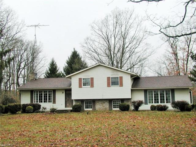5151 Mayham Rd NE, Carrollton, OH 44615 (MLS #3984552) :: Keller Williams Chervenic Realty