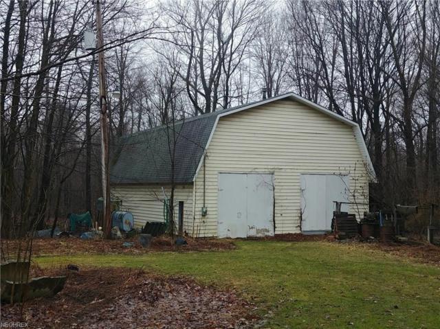 S Ridge Rd, Kingsville, OH 44048 (MLS #3984883) :: The Crockett Team, Howard Hanna