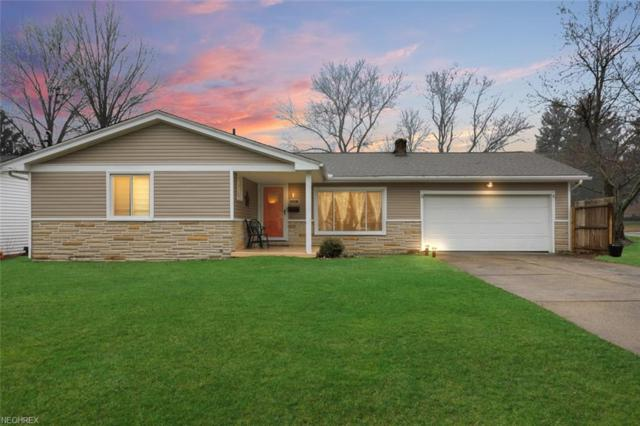 4341 Maureen Dr, Austintown, OH 44511 (MLS #3984934) :: RE/MAX Valley Real Estate