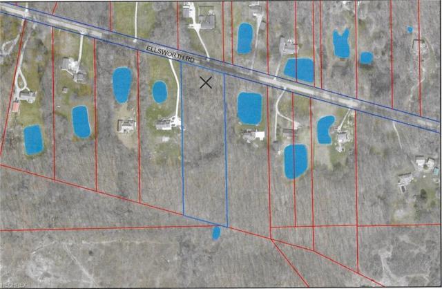 V/L Ellsworth Rd, Lake Milton, OH 44429 (MLS #3984961) :: Keller Williams Chervenic Realty