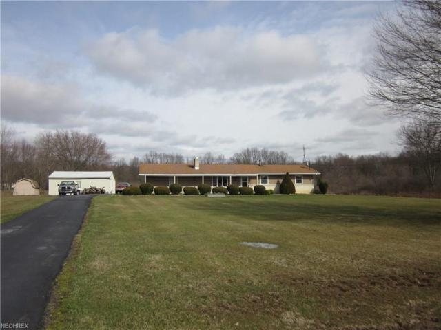 3288 Jones Rd, Diamond, OH 44412 (MLS #3985229) :: Tammy Grogan and Associates at Cutler Real Estate