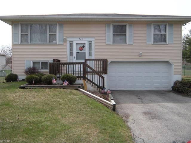 641 Dumont Ave, Campbell, OH 44405 (MLS #3985274) :: Keller Williams Chervenic Realty
