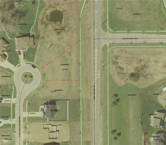 Lot 22 Morningview Ridge Circle, Wadsworth, OH 44281 (MLS #3985452) :: RE/MAX Valley Real Estate