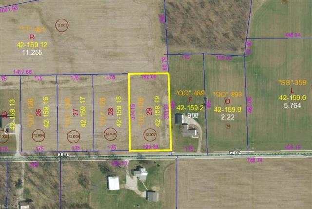 Heyl Road, Wooster, OH 44691 (MLS #3985985) :: RE/MAX Valley Real Estate