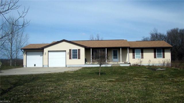 5208 Creek Rd, Andover, OH 44003 (MLS #3986065) :: Keller Williams Chervenic Realty
