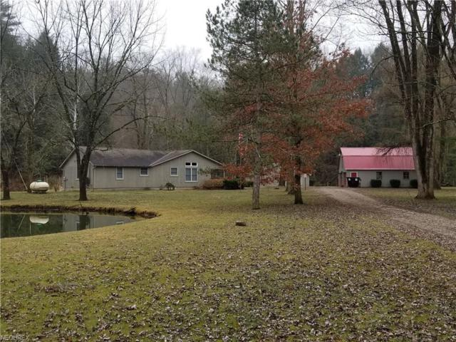 3144 County Road 3175 (Wally Rd.), Loudonville, OH 44842 (MLS #3986132) :: Keller Williams Chervenic Realty
