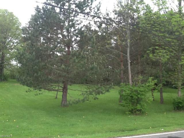 V/L Chamberlain Rd, Mantua, OH 44202 (MLS #3986309) :: Keller Williams Chervenic Realty