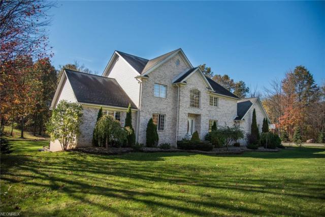 12965 Greystone Dr, Hiram, OH 44234 (MLS #3987162) :: Tammy Grogan and Associates at Cutler Real Estate