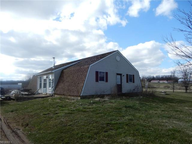 9800 Camp Rd, West Salem, OH 44287 (MLS #3987185) :: Tammy Grogan and Associates at Cutler Real Estate