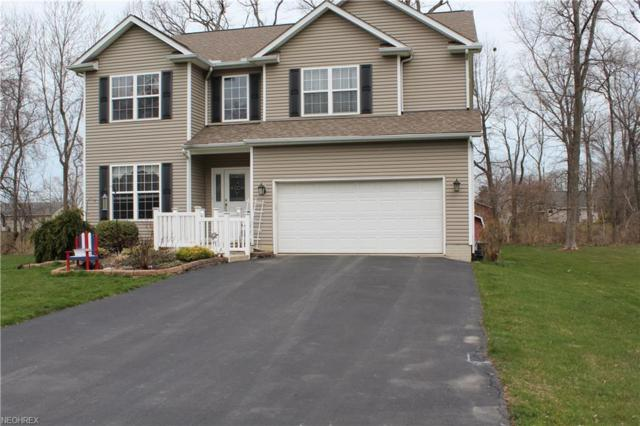 2594 Spring Lake Blvd, Painesville, OH 44077 (MLS #3987471) :: PERNUS & DRENIK Team