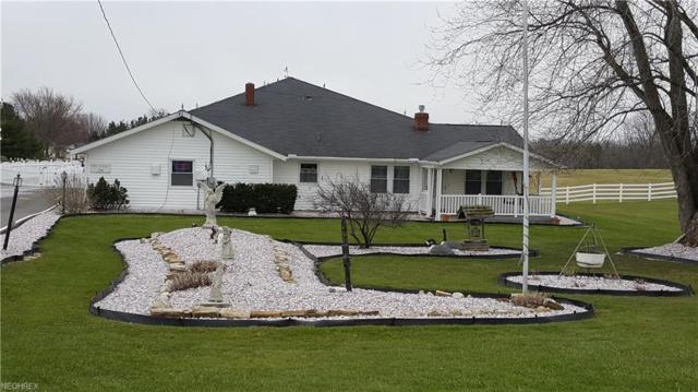 16885 Kinsman Rd, Middlefield, OH 44062 (MLS #3987591) :: Tammy Grogan and Associates at Cutler Real Estate