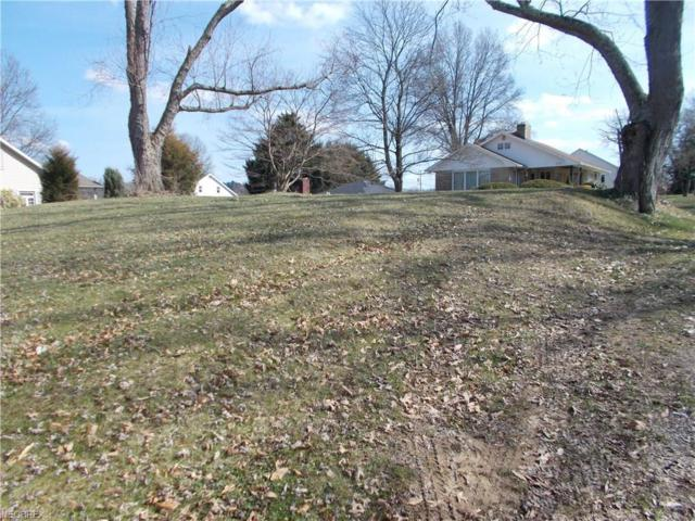 1310 Denman Ave, Coshocton, OH 43812 (MLS #3987808) :: Keller Williams Chervenic Realty