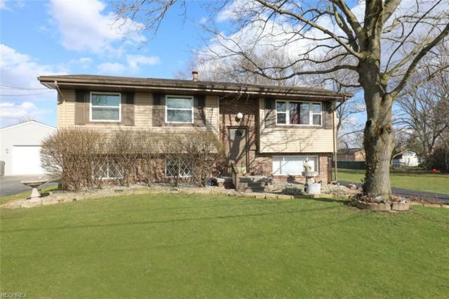 535 Peffer Ave, Niles, OH 44446 (MLS #3987892) :: RE/MAX Valley Real Estate