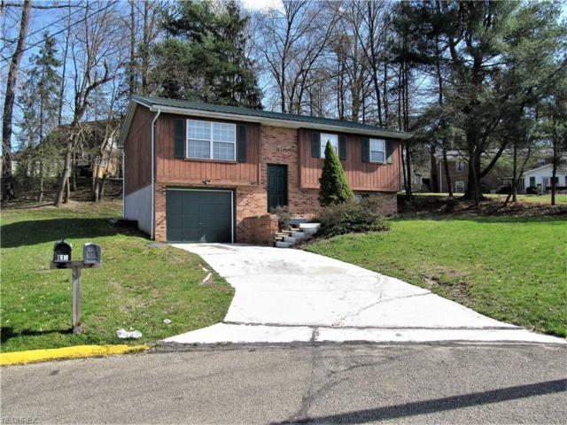 619 Mckenna Drive, Williamstown, WV 26187 (MLS #3987939) :: Tammy Grogan and Associates at Cutler Real Estate