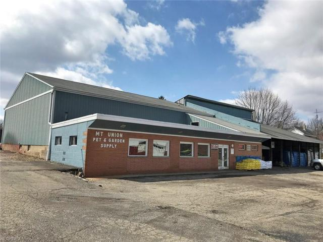 120 W Chestnut St, Alliance, OH 44601 (MLS #3988140) :: Keller Williams Chervenic Realty