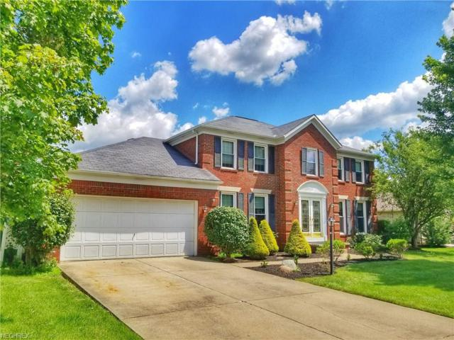 913 Southmoor Cir NE, Canton, OH 44721 (MLS #3988160) :: RE/MAX Edge Realty