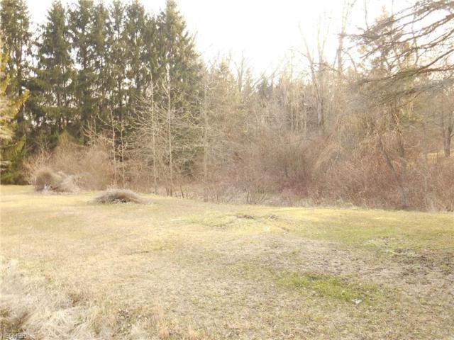 1837 Notman Rd, Deerfield, OH 44411 (MLS #3988447) :: RE/MAX Edge Realty