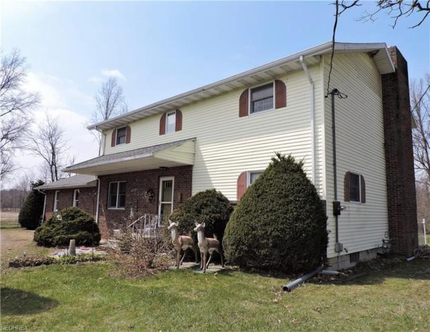 10517 State Route 113 E, Berlin Heights, OH 44814 (MLS #3988684) :: Keller Williams Chervenic Realty