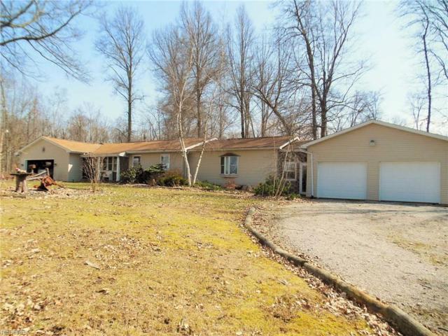 831 Township Road 462, Nova, OH 44859 (MLS #3988710) :: Keller Williams Chervenic Realty