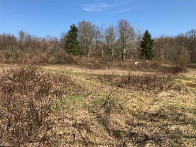 14842 Mount Perry Road, Mount Perry, OH 43760 (MLS #3988717) :: Keller Williams Chervenic Realty