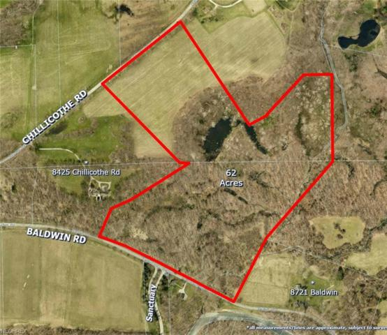 Baldwin Rd, Kirtland, OH 44060 (MLS #3988862) :: Keller Williams Chervenic Realty
