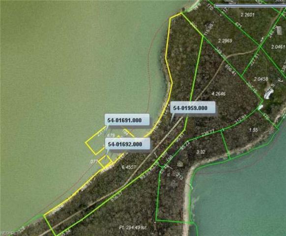 2 Long Pt, Kelleys Island, OH 43438 (MLS #3988863) :: Tammy Grogan and Associates at Cutler Real Estate