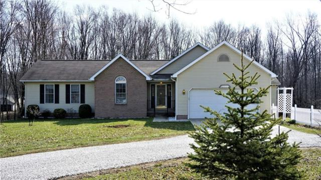 3200 State Route 44, Rootstown, OH 44272 (MLS #3989147) :: Keller Williams Chervenic Realty