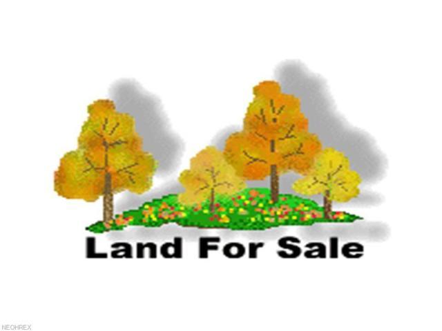 3070 Mill Rd, Dorset, OH 44032 (MLS #3989173) :: Keller Williams Chervenic Realty