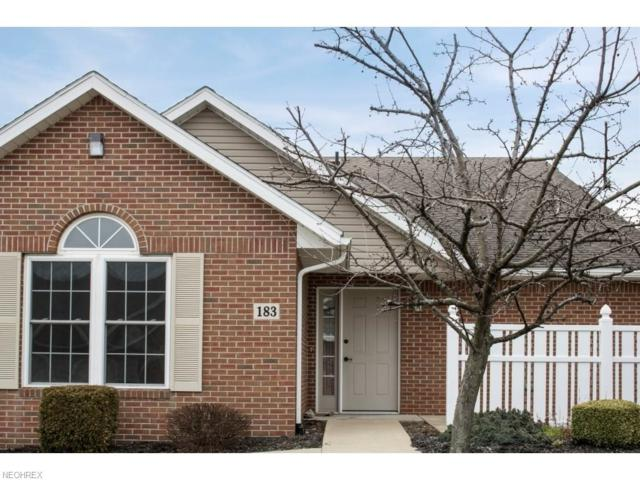 4805 Township Road 366 #183, Millersburg, OH 44654 (MLS #3989294) :: RE/MAX Trends Realty