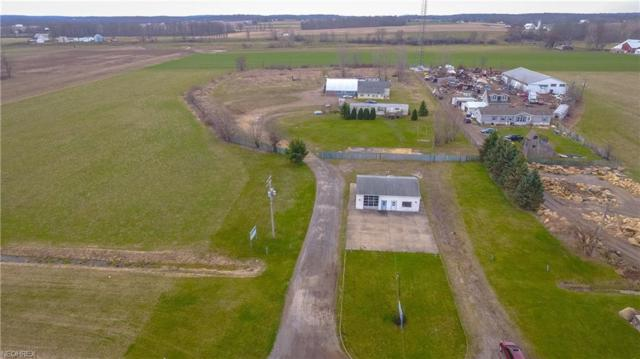 23389 State Route 62, Alliance, OH 44601 (MLS #3989476) :: Keller Williams Chervenic Realty