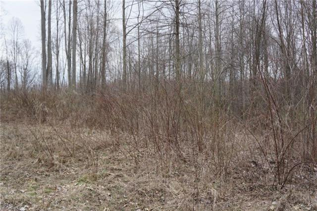 Lot 79 Luli, Mogadore, OH 44260 (MLS #3989605) :: Keller Williams Chervenic Realty
