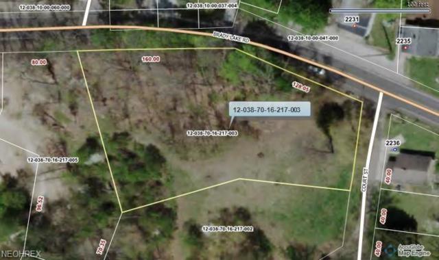 Brady Lake Rd, Kent, OH 44240 (MLS #3989724) :: Keller Williams Chervenic Realty