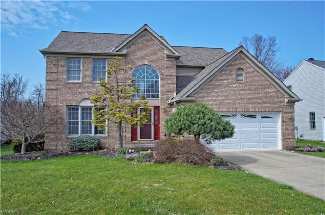 9876 Parkland Dr, Twinsburg, OH 44087 (MLS #3989826) :: RE/MAX Edge Realty