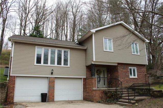 46144 Township Road 1163, Conesville, OH 43811 (MLS #3989934) :: Keller Williams Chervenic Realty