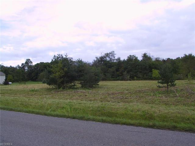 Hubbard Valley Rd, Seville, OH 44273 (MLS #3990089) :: RE/MAX Edge Realty