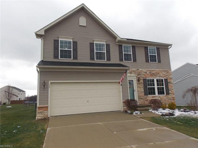 175 Chester Ave, Wadsworth, OH 44281 (MLS #3990155) :: Keller Williams Chervenic Realty