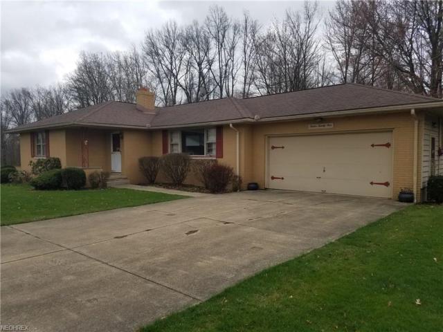 1225 Rose Ave, Girard, OH 44420 (MLS #3990173) :: PERNUS & DRENIK Team