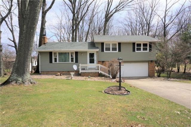 8013 Paulin Dr, Poland, OH 44514 (MLS #3990330) :: RE/MAX Valley Real Estate