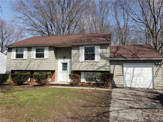 420 Manhattan Pky, Painesville, OH 44077 (MLS #3990687) :: PERNUS & DRENIK Team