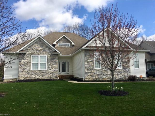 3915 Spring Brook, Wooster, OH 44691 (MLS #3991080) :: Keller Williams Chervenic Realty