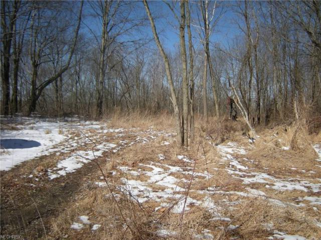 Township Road 55, Coshocton, OH 43812 (MLS #3991101) :: Keller Williams Chervenic Realty